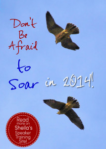 Don't Be Afraid to Soar in 2014!